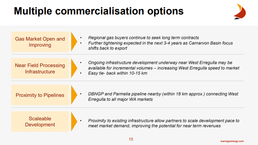 Commercialisation Options