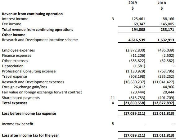 fy19 income statement