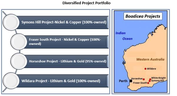 Diversified project portfolio