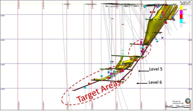 Long Section of Cox's Find Underground Working Highlighting Target Areas Of Upcoming Drill program (Source: Company's Report)